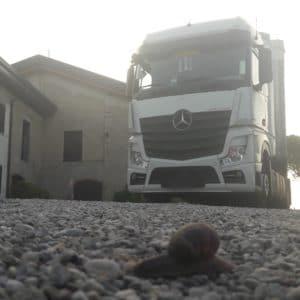 Nemzetközi kamionsofőr - 2 hét kinn / 2 hét otthon